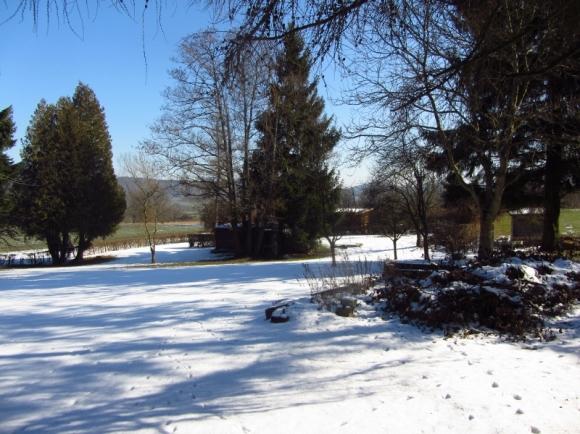 Der verschneite Garten in der Haid